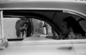 Ana Carolina Fernandes Photojournalist Brazil
