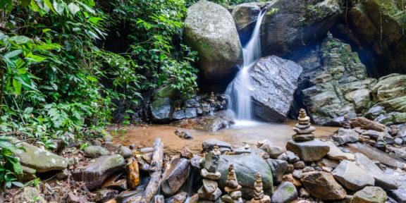 Tijuca Forest Rio de Janeiro Environment Conservation