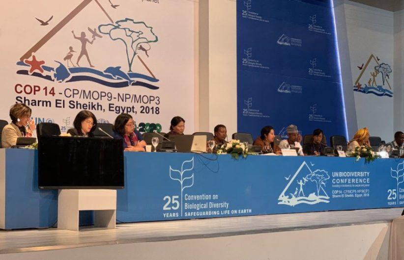 UN Biodiversity Bolsonaro